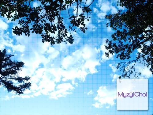 Blue Skies | 2008